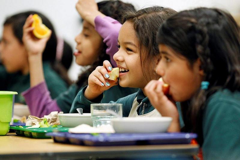 Comedor Escolar Globus Animacions | Ludotecas Valencia